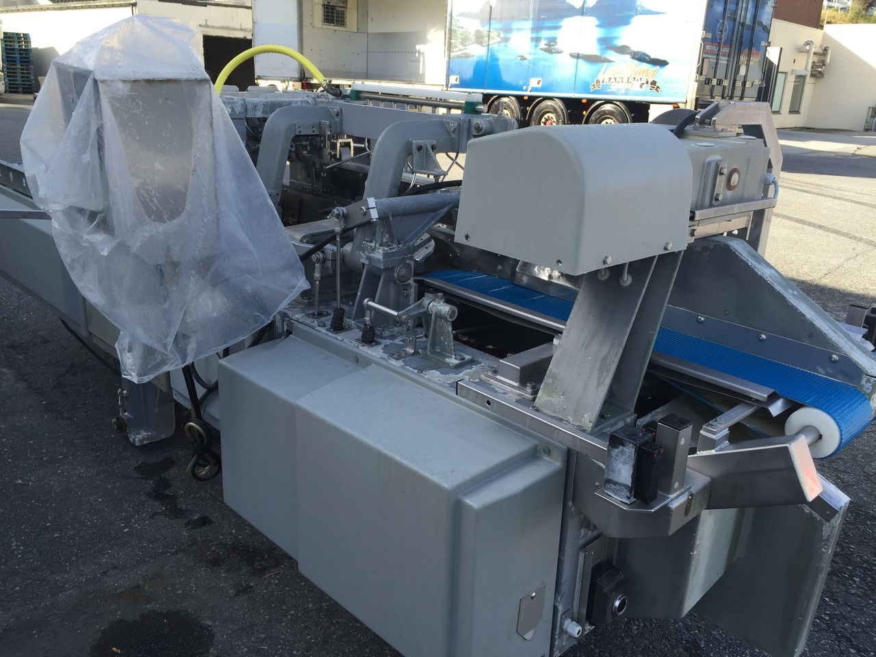 Filleting machine for salmon species Baader 200